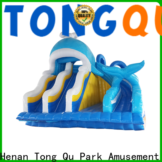 Tongtoy fire-resistant children's blow up water slide factory price for water park