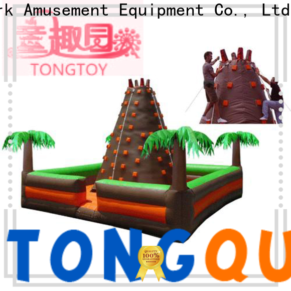 Tongtoy Tongtoy blow up rock climbing wall factory price for carnivals