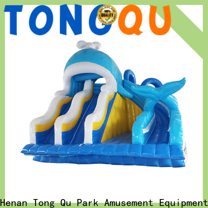 Tongtoy best inflatable pool slide Suppliers for water park