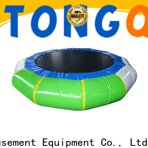 Tongtoy water trampoline buy now for adult