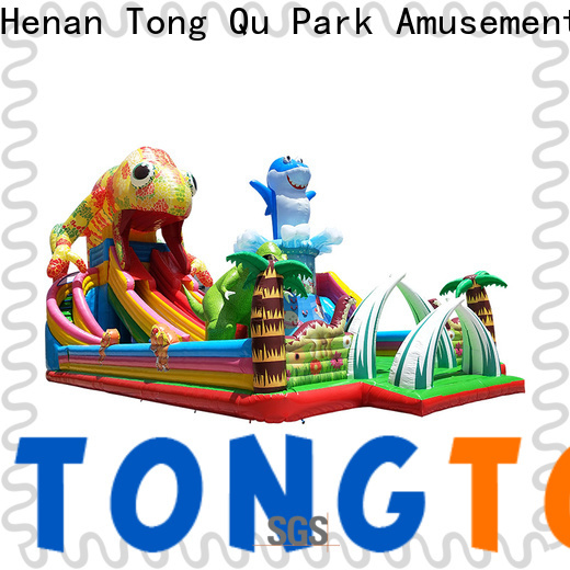 Tongtoy giant water slide for sale wholesale for outdoor
