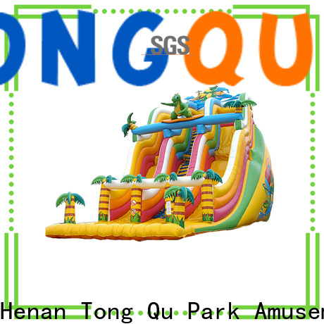 Tongtoy inflatable bounce house with slide reputable manufacturer for indoor