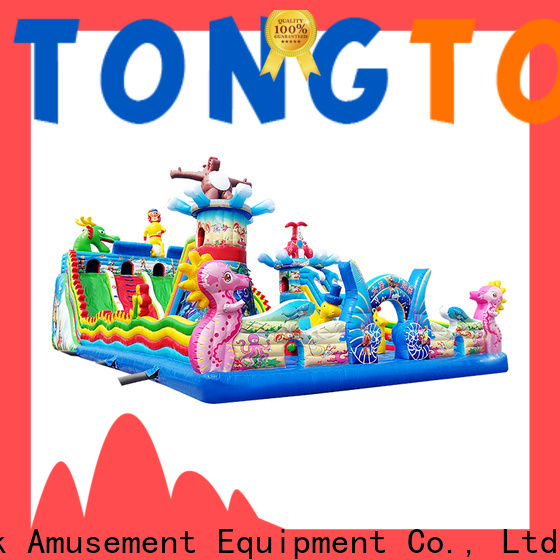 Tongtoy Tongtoy princess bouncer wholesale for adult
