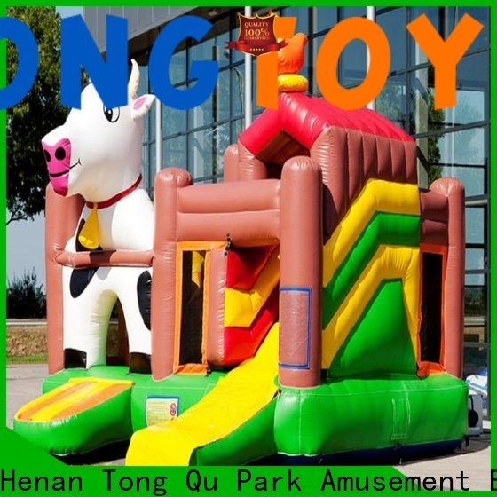 Tongtoy giant water slide wholesale for outdoor