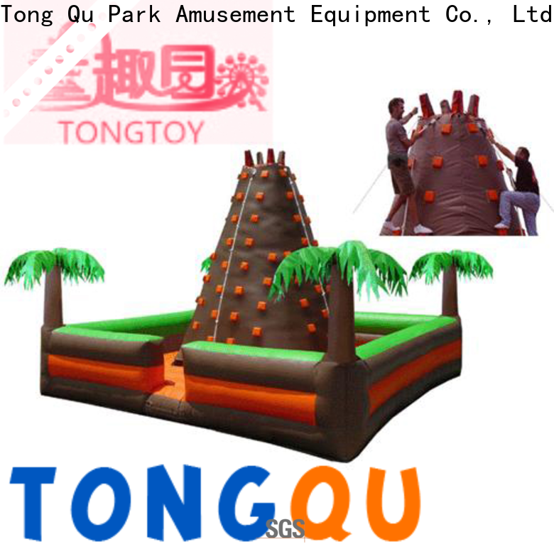 Tongtoy bounce house climbing wall reputable manufacturer for big events