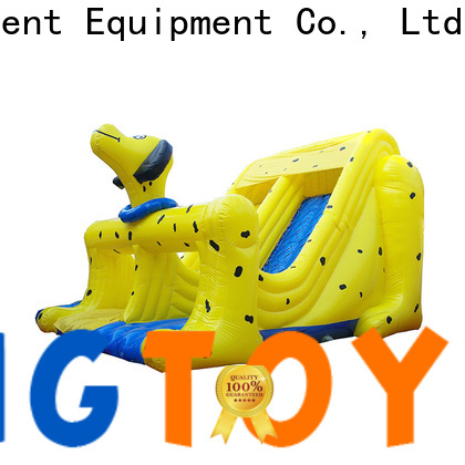 Tongtoy High-quality wet and dry inflatable slide factory price for outdoor