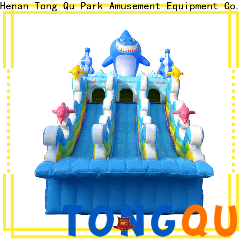 Tongtoy water slides for kids factory price for swimming pool