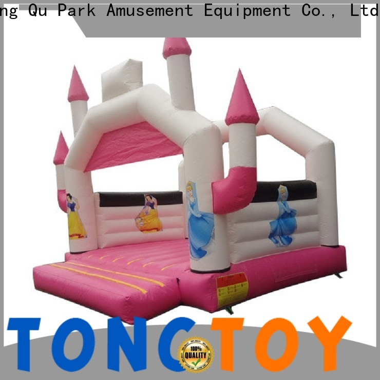 Heat resistant dinosaur bounce house for sale supplier for outdoor