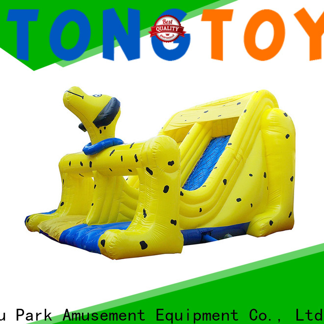 Tongtoy inflatable bounce slide combo reputable manufacturer for outdoor