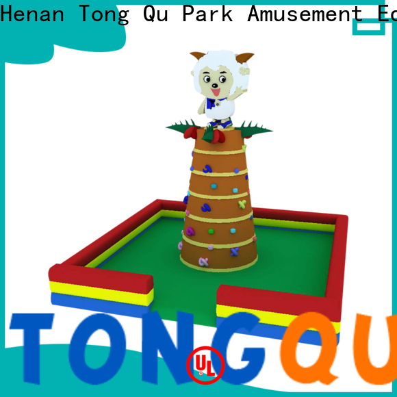 Tongtoy inflatable rock climbing wall kids reputable manufacturer for fundraisers