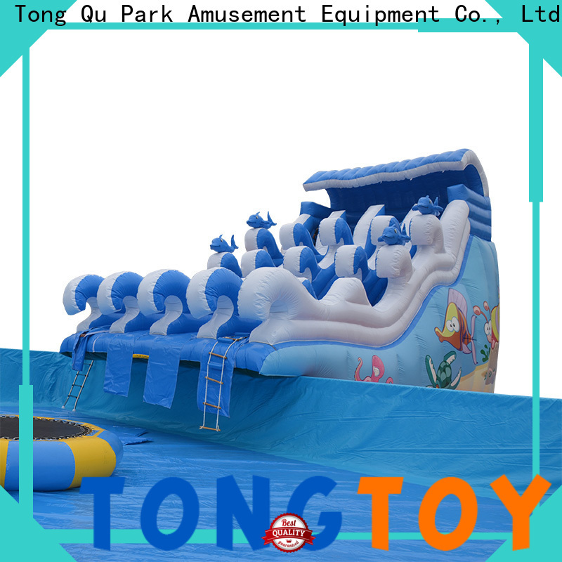 Custom inflatable water slide factory for swimming pool