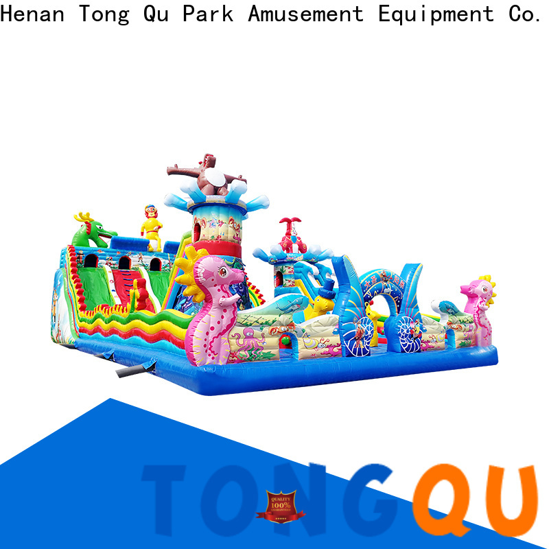 Tongtoy mickey mouse inflatable bouncer wholesale for outdoor