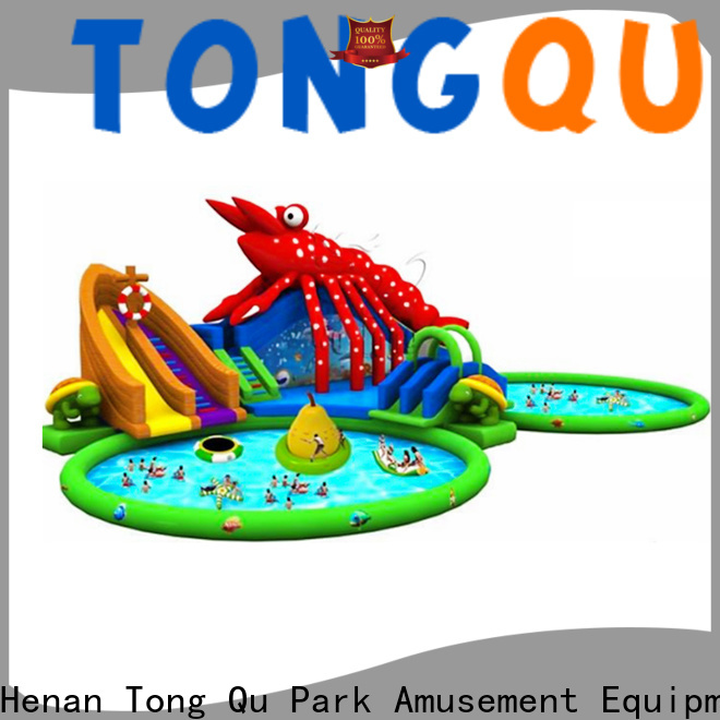 Tongtoy New large blow up water slide Supply for swimming pool