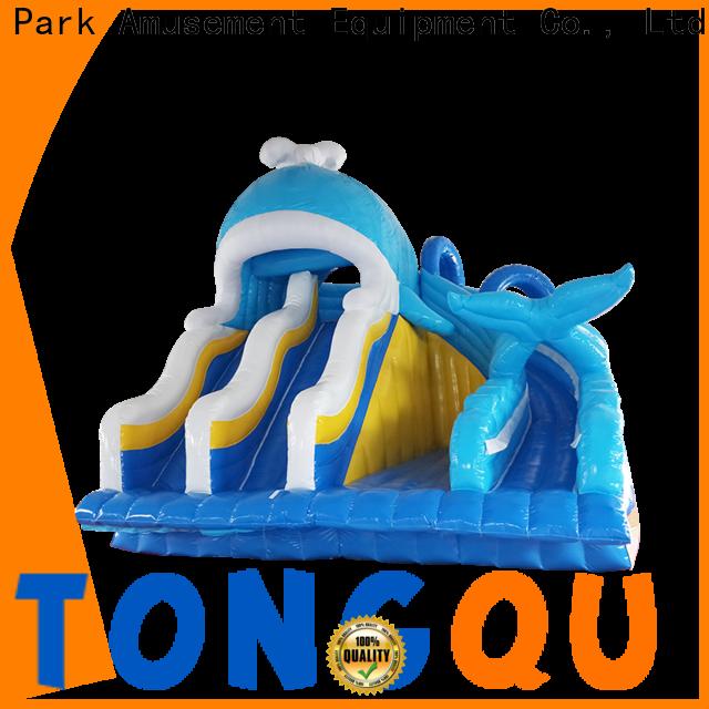 Custom inflatable water slide Suppliers