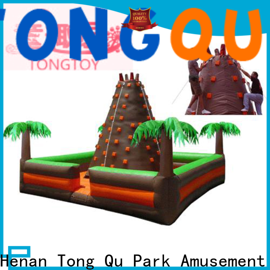 Tongtoy good selling blow up climbing wall reputable manufacturer for fundraisers