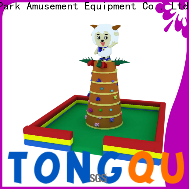 Tongtoy blow up rock climbing wall order now for big events