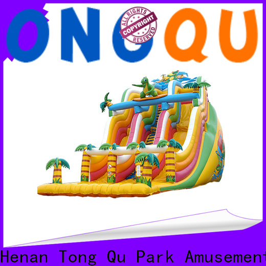 Best giant bouncy slide from China for amusement park