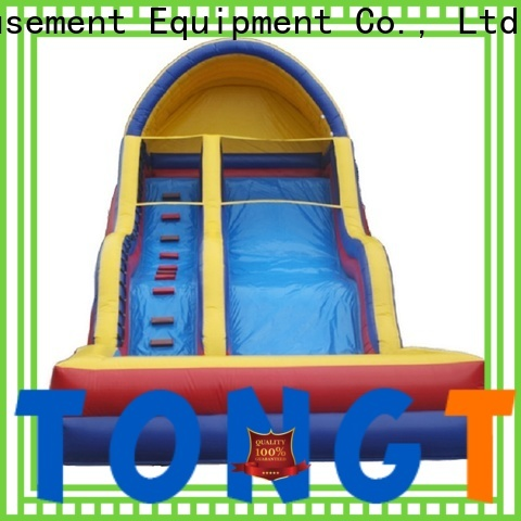 Tongtoy palm tree water slide for business for water park