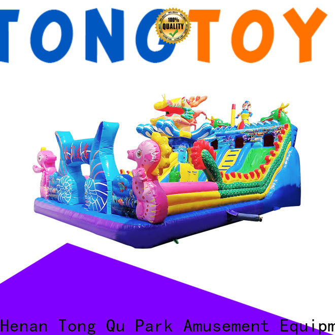 Tongtoy fire-resistant giant inflatable water slide wholesale for kids