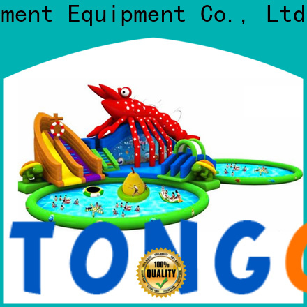 Tongtoy blow up water parks reputable manufacturer for swimming pool