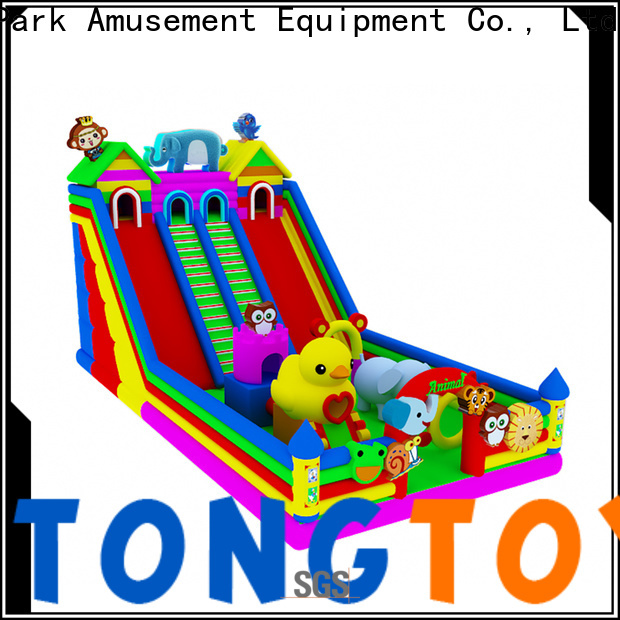 Tongtoy commercial inflatable slide reputable manufacturer for outdoor