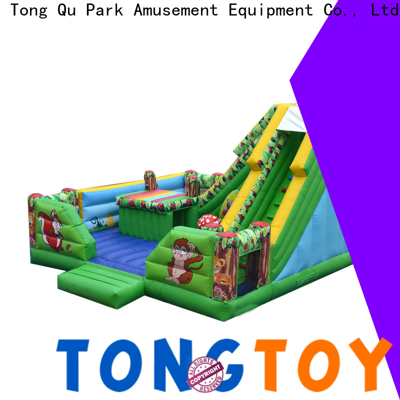 Tongtoy High-quality blow up water slide wholesale for adult