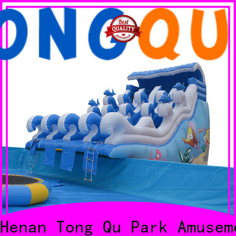 Tongtoy Wholesale custom inflatable jumpers for sale Supply for swimming pool