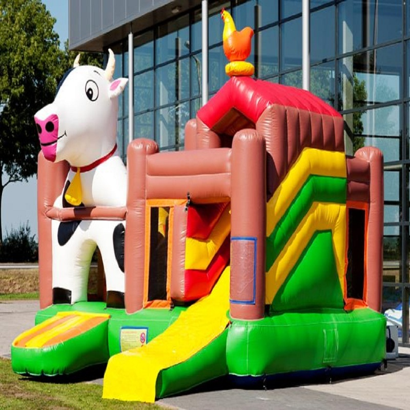Hot Sale Customized Color Inflatable Clown Bouncer And Bouncy Castle