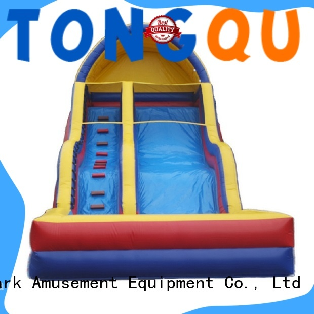 Tongtoy huge inflatable water slides for rent Supply for swimming pool